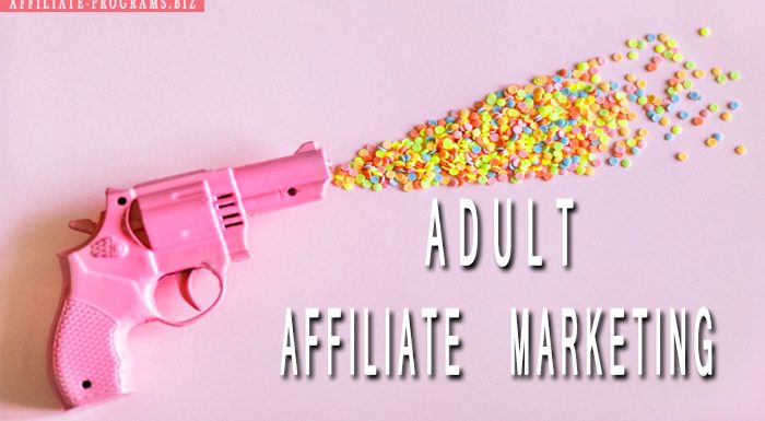 Adult Affiliate marketing for beginners