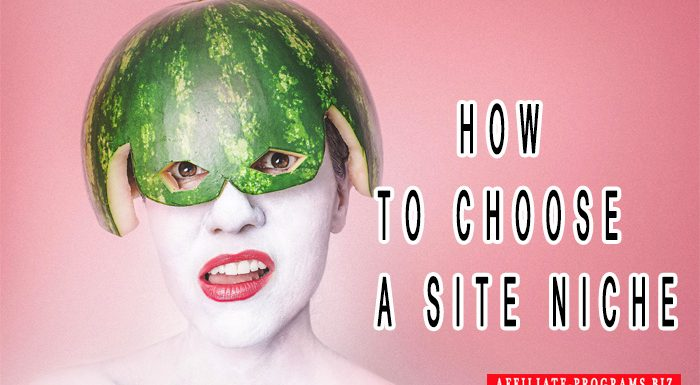 How to choose a Site Niche