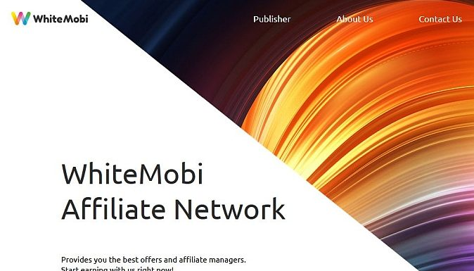Mobile pin submits WhiteMobi