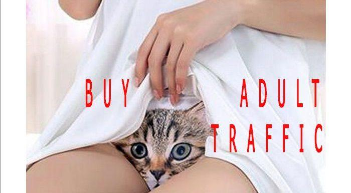 FPCTraffic: Where to buy adult traffic