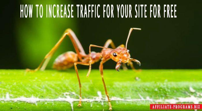 How to increase traffic to your site for free